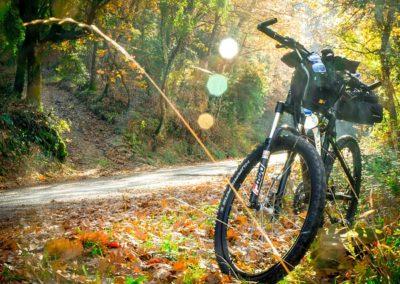 Ciclismo en la Sierra de Guadarrama.